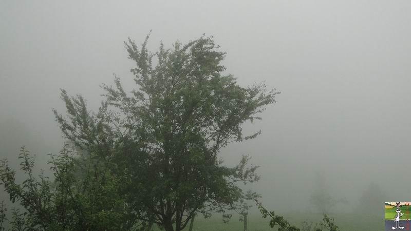 2012-07-02 : Temps d'été à La Mainmorte (39) 2012-07-02_brouillard_01