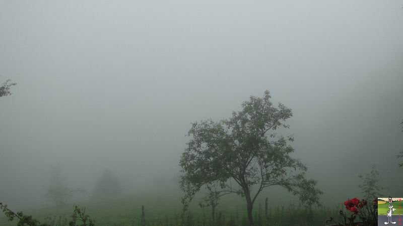 2012-07-02 : Temps d'été à La Mainmorte (39) 2012-07-02_brouillard_02