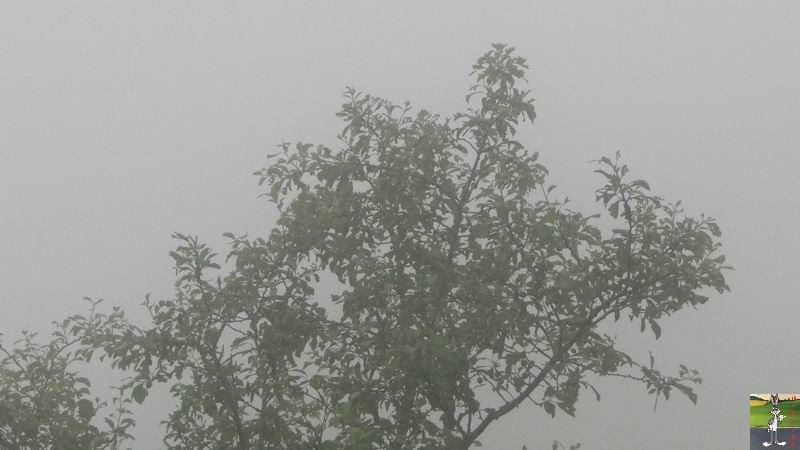 2012-07-02 : Temps d'été à La Mainmorte (39) 2012-07-02_brouillard_03