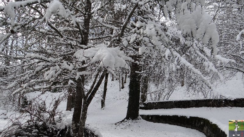 2012-11-30 : Neige à La Mainmorte (39) 2012-11-30_neige_01