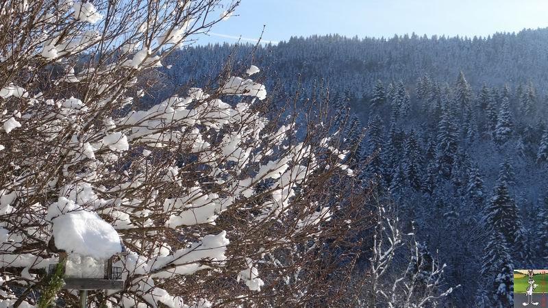 2012-12-01 : Neige à La Mainmorte (39) 2012-12-01_neige_05