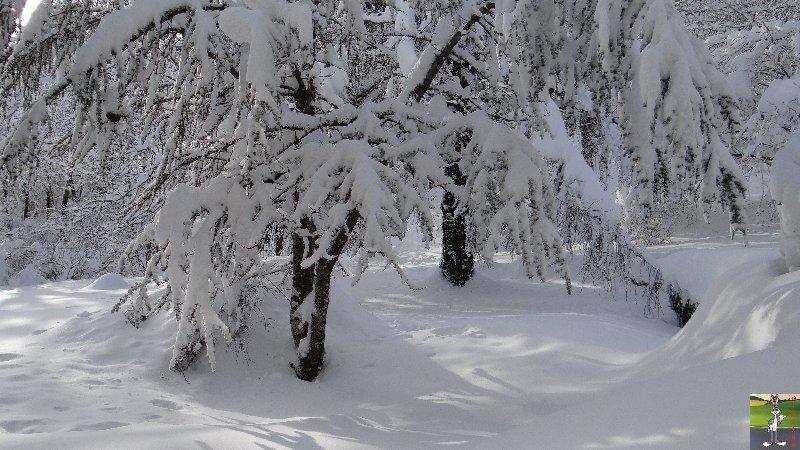 2012-12-08 : Neige à La Mainmorte (39) 2012-12-08_neige_14