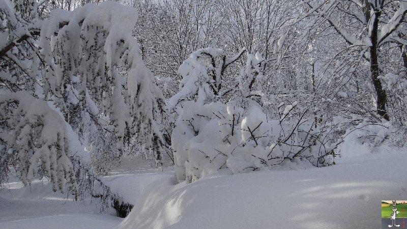2012-12-08 : Neige à La Mainmorte (39) 2012-12-08_neige_15