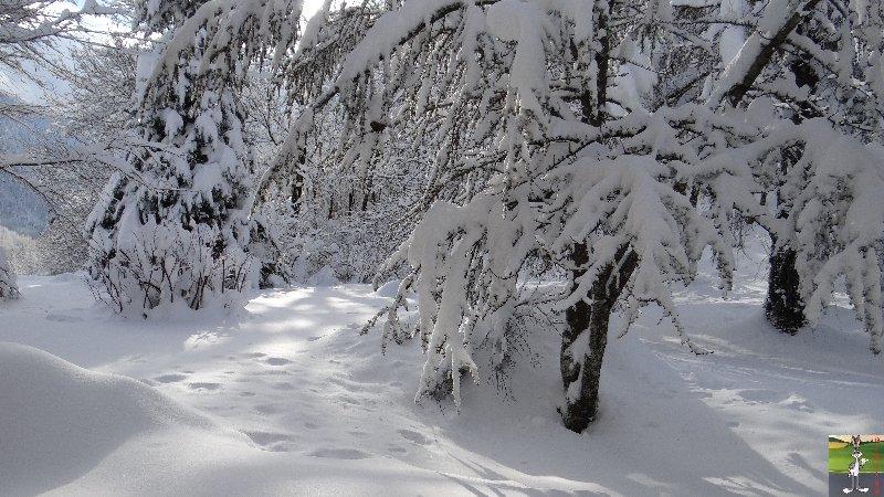 2012-12-08 : Neige à La Mainmorte (39) 2012-12-08_neige_16