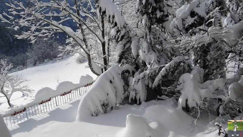 2012-12-09 : Neige à La Mainmorte (39) 2012-12-09_neige_03
