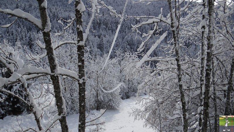 2013-01-11 : Neige et soleil à La Mainmorte (39) 2013-01-12_neige_soleil_01