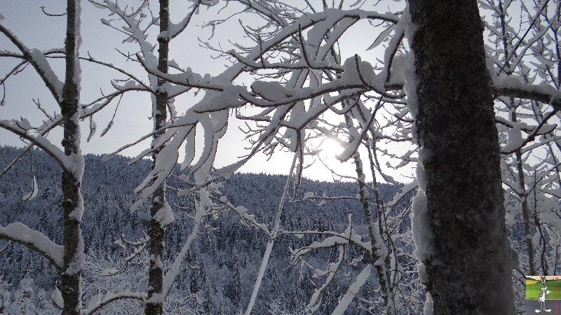 2013-01-11 : Neige et soleil à La Mainmorte (39) 2013-01-12_neige_soleil_02