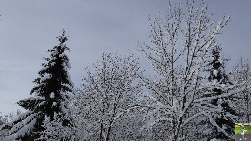 2013-01-11 : Neige et soleil à La Mainmorte (39) 2013-01-12_neige_soleil_05