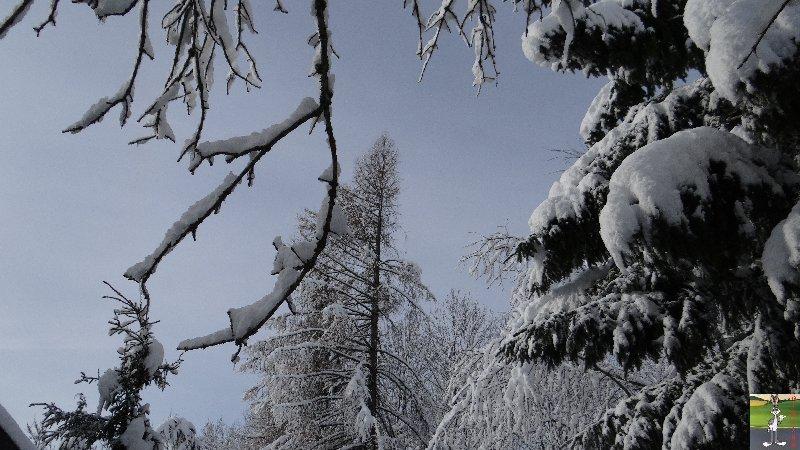 2013-01-11 : Neige et soleil à La Mainmorte (39) 2013-01-12_neige_soleil_08