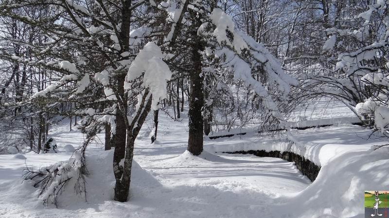 2013-02-10 : Neige et soleil à La Mainmorte (39) 2013-02-10_neige_soleil_01