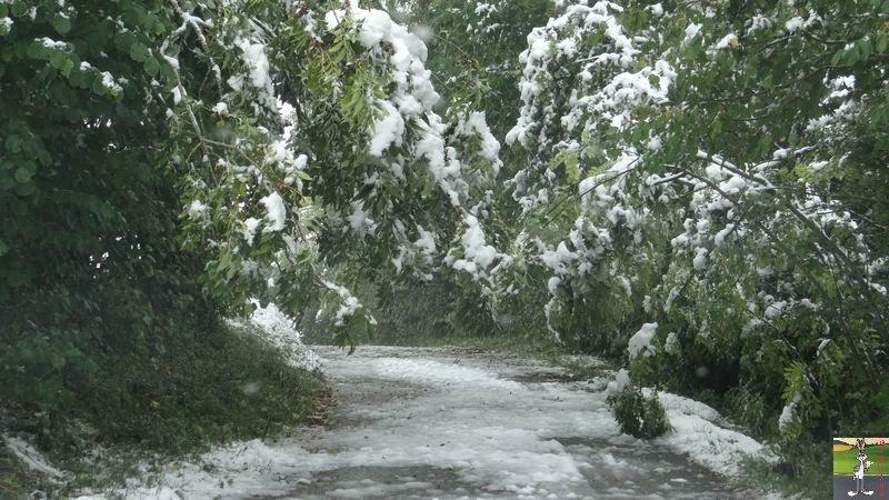 2013-10-11 : Première neige à La Mainmorte (39) 2013-10-11_premiere_neige_14