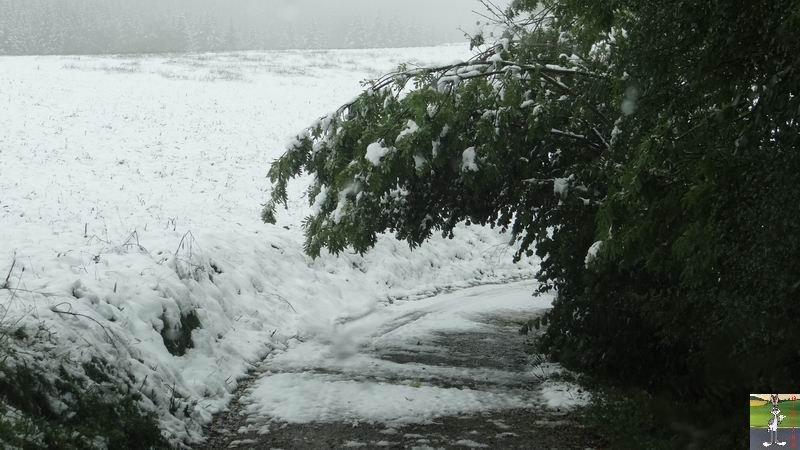 2013-10-11 : Première neige à La Mainmorte (39) 2013-10-11_premiere_neige_15