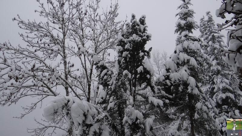 2013-11-23 : Neige à La Mainmorte (39) 2013-11-23_neige_03