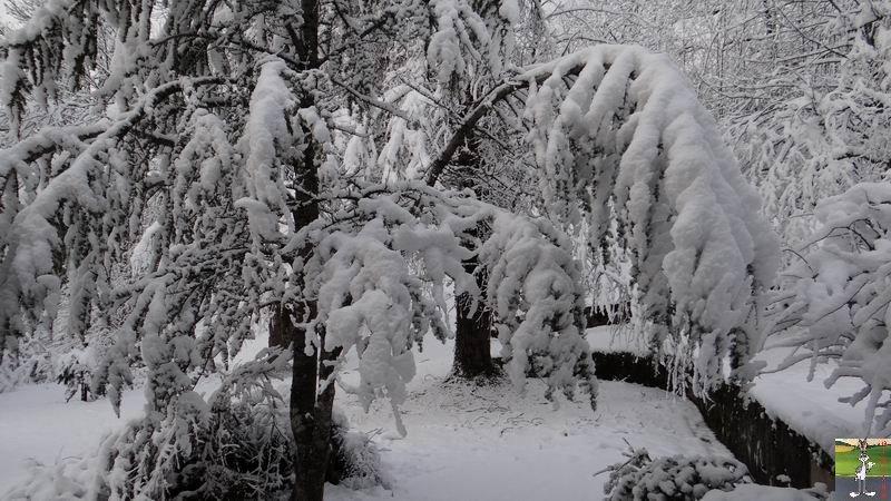 2013-12-27 : Neige et soleil à La Mainmorte (39) 2013-12-27_neige_soleil_01