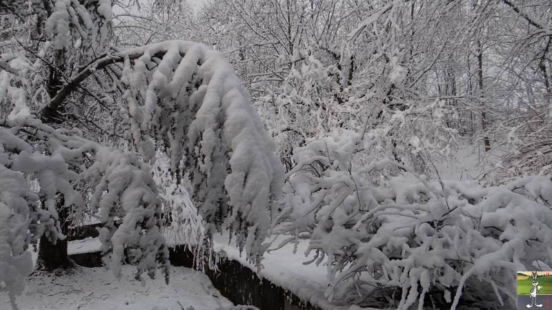 2013-12-27 : Neige et soleil à La Mainmorte (39) 2013-12-27_neige_soleil_02