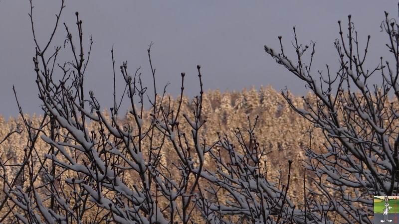 2014-02-28 : Neige et soleil à La Mainmorte (39) 2014-02-28_neige_soleil_03
