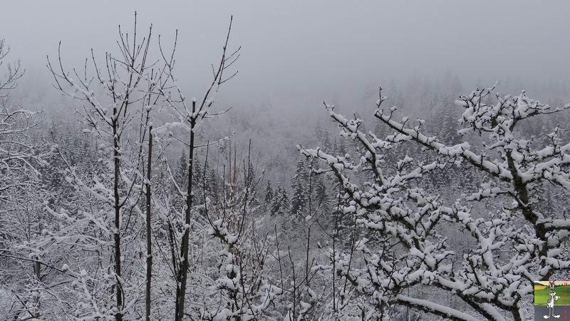 2014-03-23 : Retour de la neige à La Mainmorte (39) 2014-03-23_neige_01