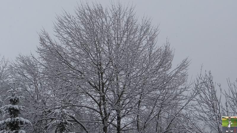 2014-03-23 : Retour de la neige à La Mainmorte (39) 2014-03-23_neige_02