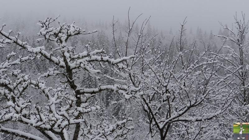 2014-03-23 : Retour de la neige à La Mainmorte (39) 2014-03-23_neige_03