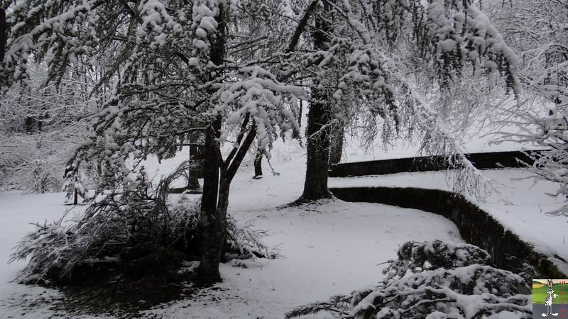 2014-03-23 : Retour de la neige à La Mainmorte (39) 2014-03-23_neige_06