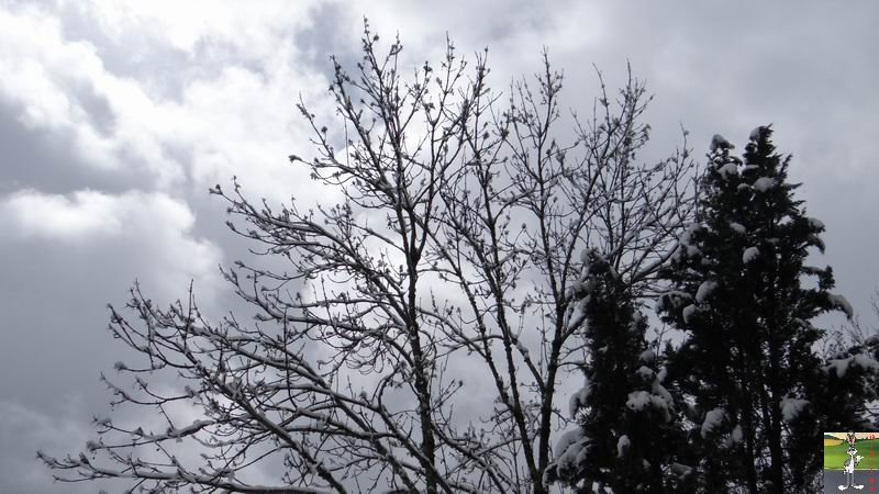 2014-03-23 : Retour de la neige à La Mainmorte (39) 2014-03-23_neige_09