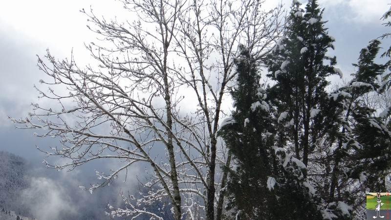 2014-03-23 : Retour de la neige à La Mainmorte (39) 2014-03-23_neige_10
