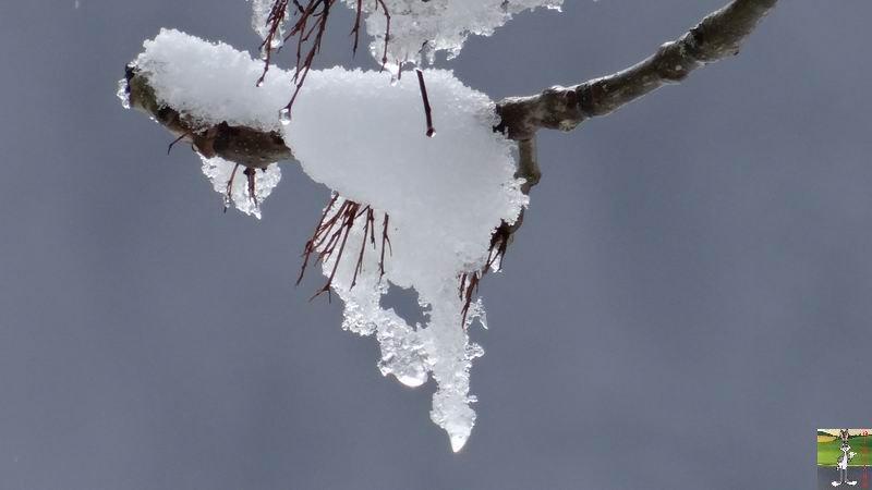 2014-03-23 : Retour de la neige à La Mainmorte (39) 2014-03-23_neige_11