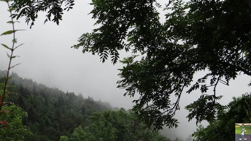 2014-07-12 : Pluie et brouillard à La Mainmorte (39) 2014-07-12_brouillard_mouille_01
