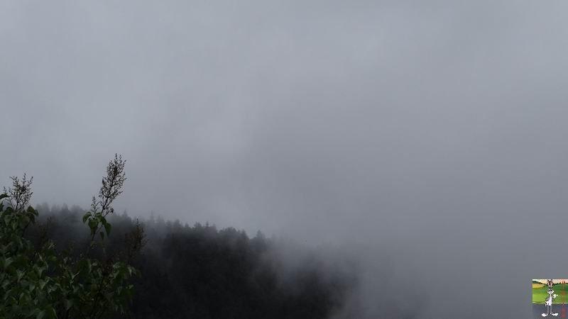 2014-07-12 : Pluie et brouillard à La Mainmorte (39) 2014-07-12_brouillard_mouille_02