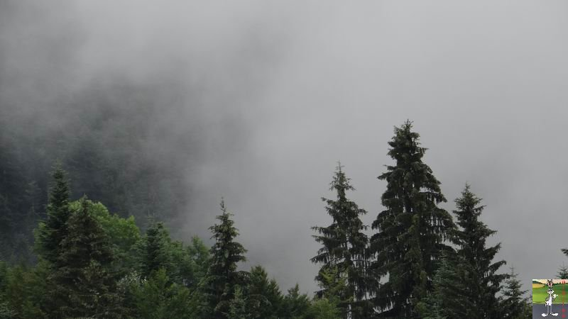 2014-07-12 : Pluie et brouillard à La Mainmorte (39) 2014-07-12_brouillard_mouille_04