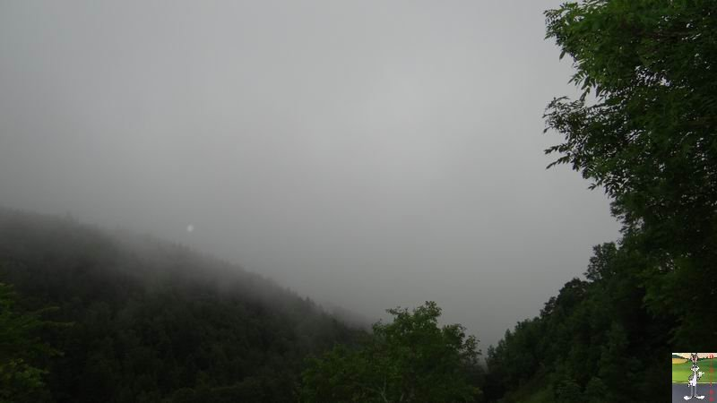 2014-07-12 : Pluie et brouillard à La Mainmorte (39) 2014-07-12_brouillard_mouille_06
