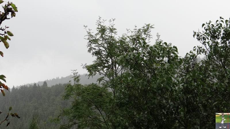 2014-07-26 : Gros déluge et orage à La Mainmorte (39) 2014-07-26_Pluie_04