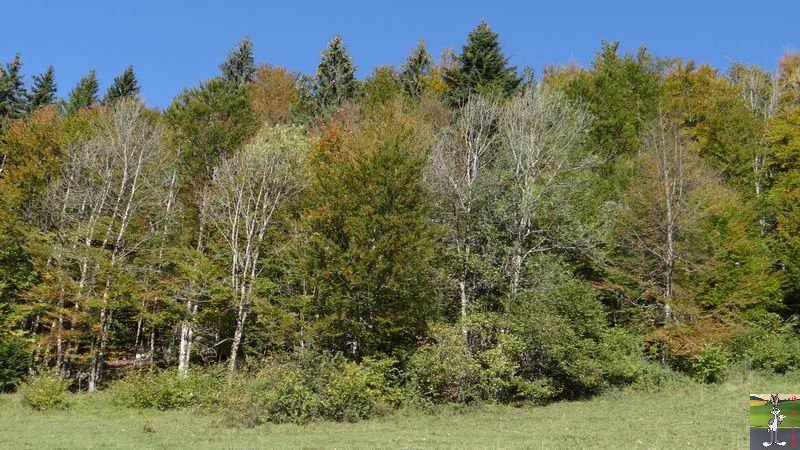 2014-10-19 : Couleurs d'automne à La Mainmorte (39) 2014-10-19_couleur_automne_03