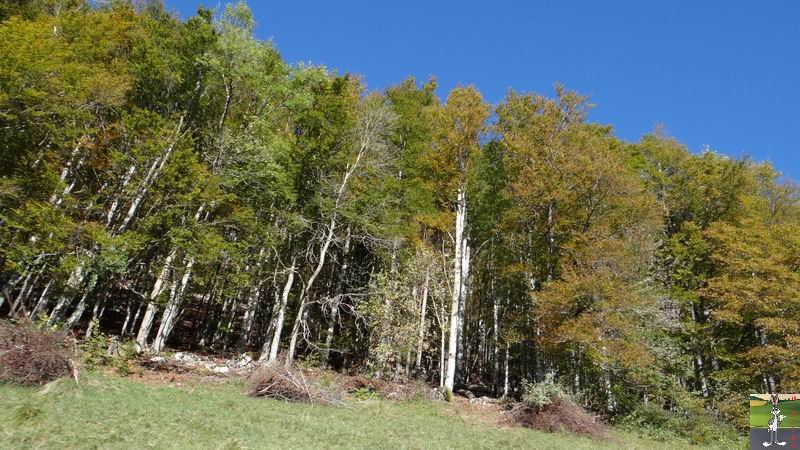 2014-10-19 : Couleurs d'automne à La Mainmorte (39) 2014-10-19_couleur_automne_05
