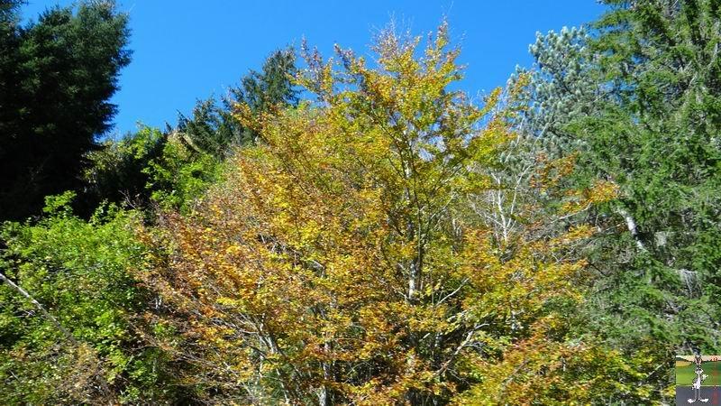 2014-10-19 : Couleurs d'automne à La Mainmorte (39) 2014-10-19_couleur_automne_07