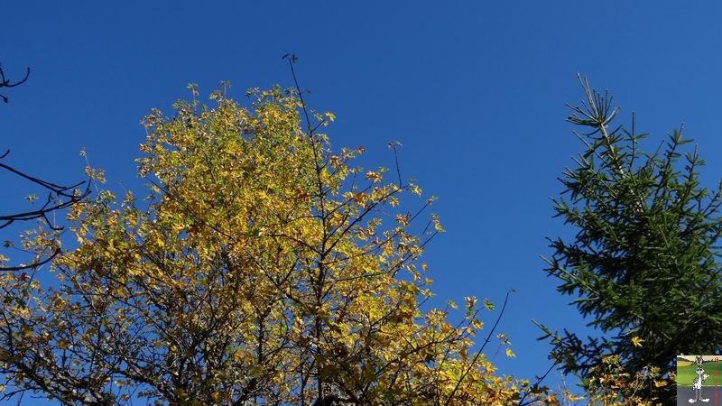 2014-10-19 : Couleurs d'automne à La Mainmorte (39) 2014-10-19_couleur_automne_11