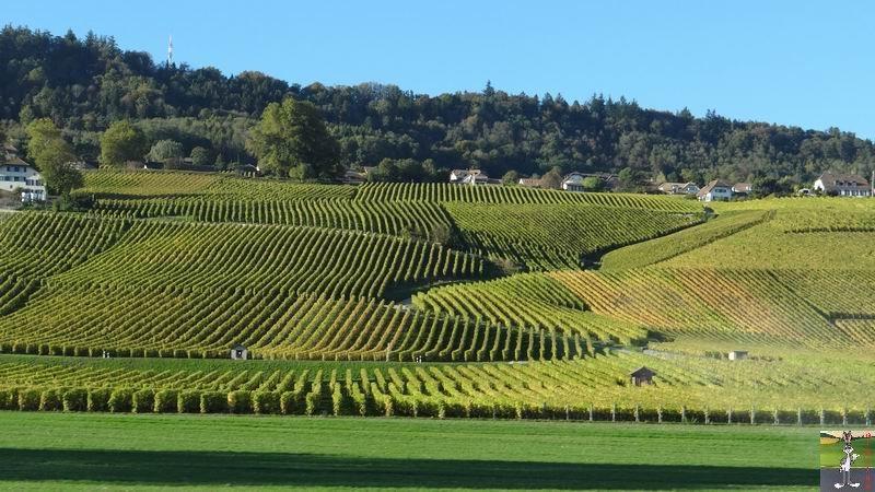 2014-10-26 : Balade en Suisse 2014-10-26_suisse_07