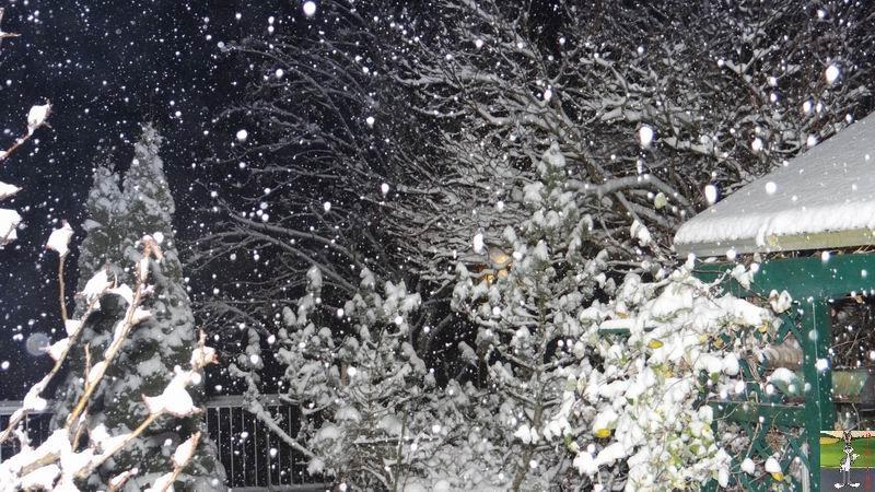 2014-12-08 : La neige arrive à La Mainmorte (39) 2014-12-08_neige_04
