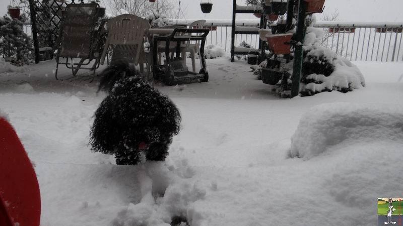 2014-12-27 : La neige est là et bien là à La Mainmorte (39) 2014-12-27_neige_18