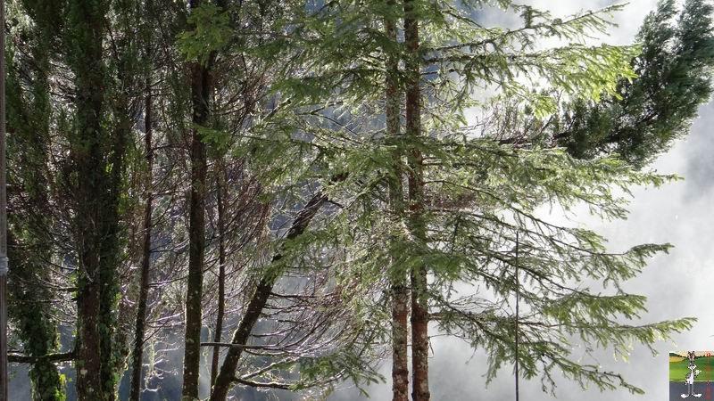 2015-01-04 : Neige et soleil à La Mainmorte (39) 2015-01-04_neige_soleil_05