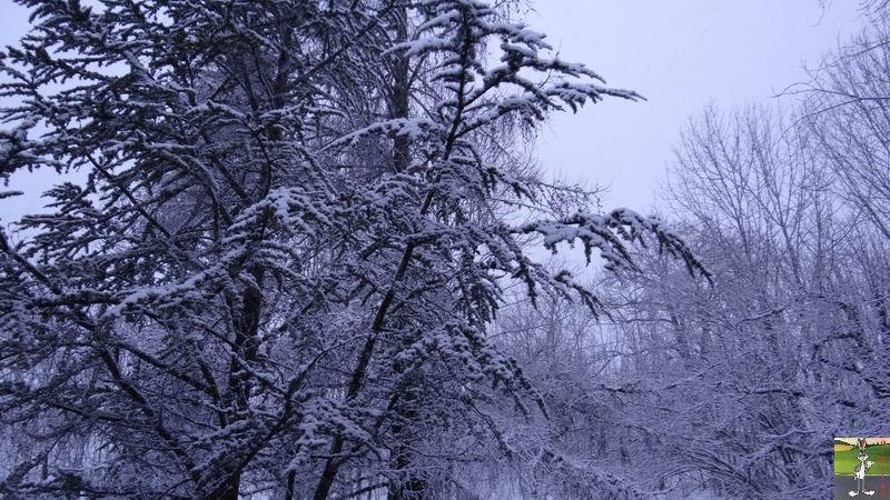 2015-01-11 : Neige à La Mainmorte (39) 2015-01-11_neige_03