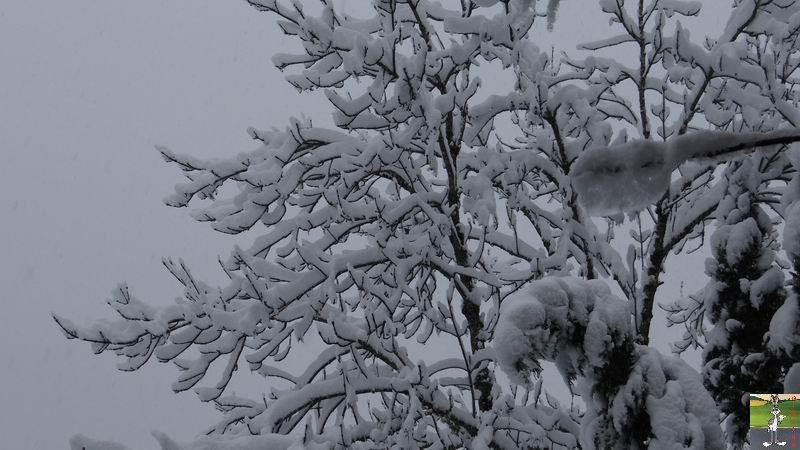 2015-01-17 : Neige à La Mainmorte (39) 2015-01-17_neige_02