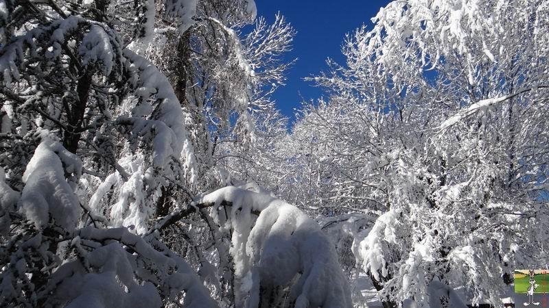 2015-01-18 : Neige et soleil à La Mainmorte (39) 2015-01-18_neige_soleil_01