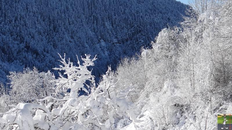2015-01-18 : Neige et soleil à La Mainmorte (39) 2015-01-18_neige_soleil_19