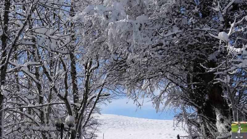 2015-01-18 : Neige et soleil à La Mainmorte (39) 2015-01-18_neige_soleil_20
