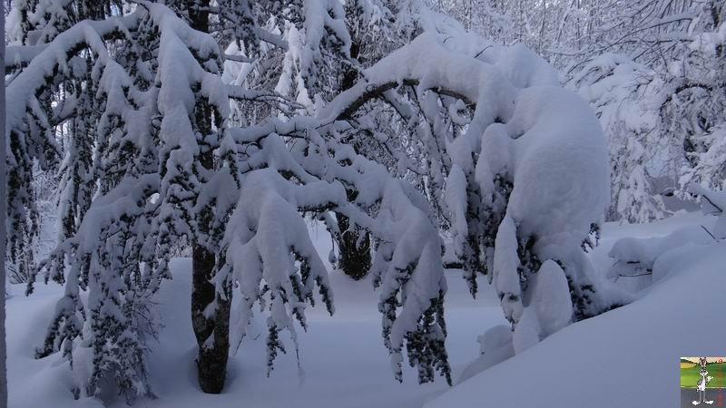 2015-01-31 : Neige à La Mainmorte (39) 2015-01-31_neige_01