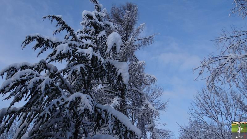 2015-01-31 : Neige à La Mainmorte (39) 2015-01-31_neige_02
