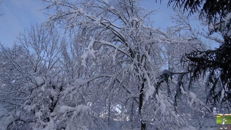 2015-01-31 : Neige à La Mainmorte (39) 2015-01-31_neige_04