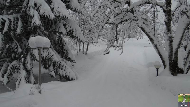 2015-01-31 : Neige à La Mainmorte (39) 2015-01-31_neige_06