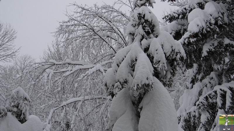 2015-01-31 : Neige à La Mainmorte (39) 2015-01-31_neige_07